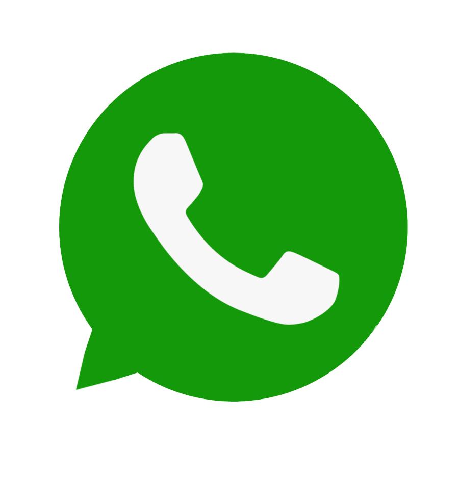 whatsapp icon 666